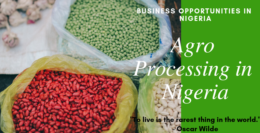 Agro Processing in Nigeria